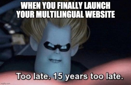 Slow turnaround time for website translation meme