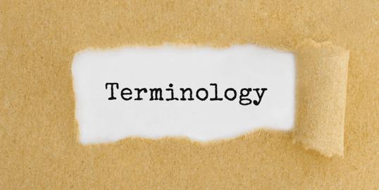 terminology base for translation